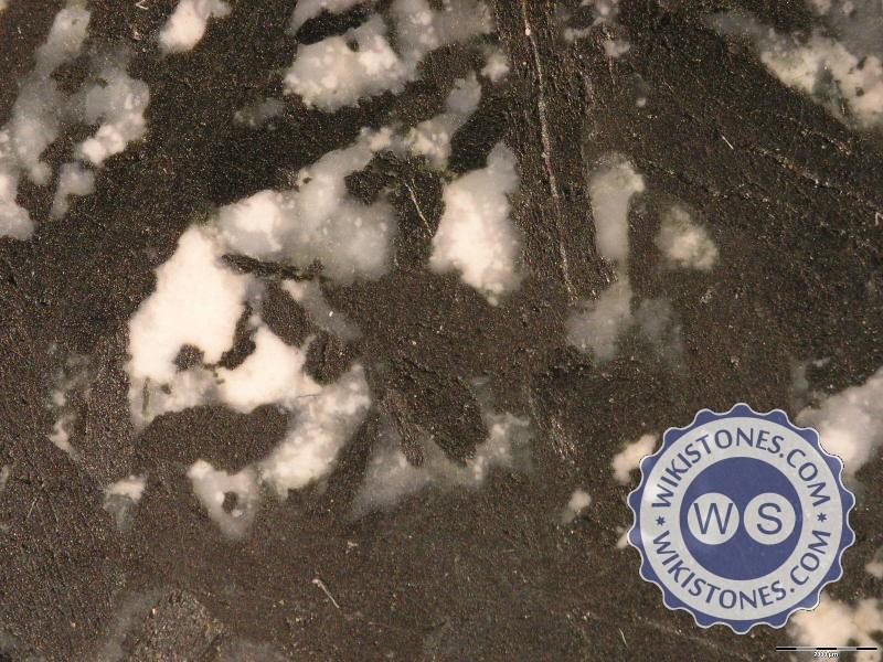 Granito della Colonna (foto 01)